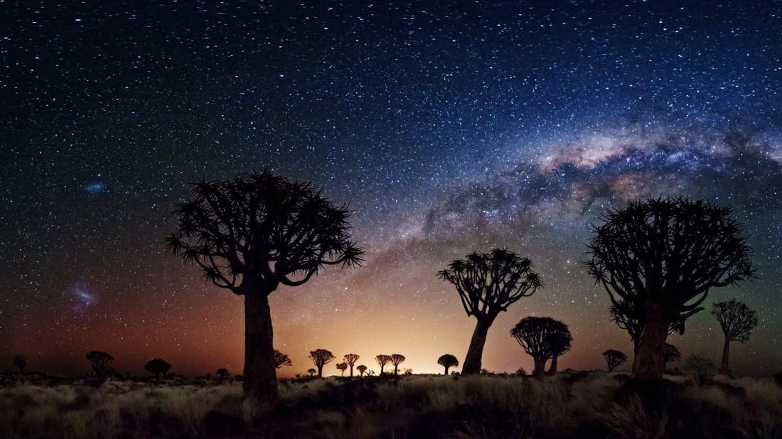 Joshua-tree-national-park-at-night-1.jpg